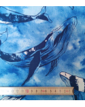 Loneta de ballenas