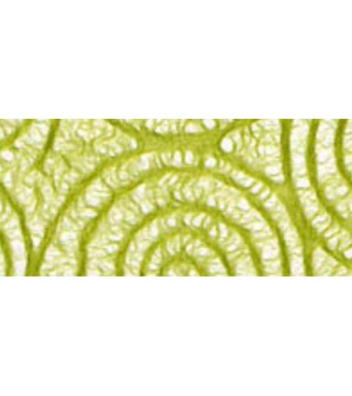 Papel tissue espirales verde pistacho